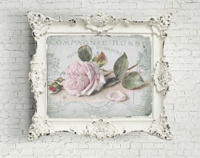 Digital Shabby Chic Rose Collage, French Letter Ephemera, Printable, Old fashioned Rose Transfer, Scrapbook Supply ©
