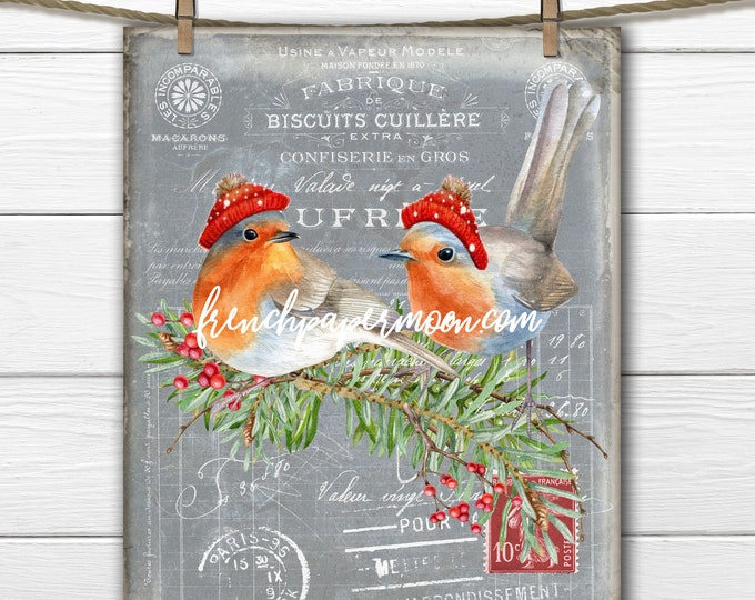 Adorable Winter Bird Digital, Dressed Birds, French Christmas Birds, French Pillow Image, DIY Xmas Sign, Wreath Decor, Tiered Tray, Print