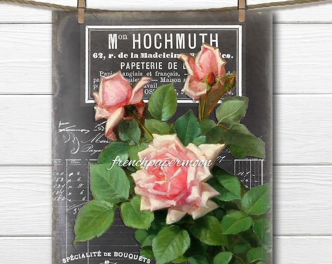 Vintage Digital French Chalkboard Roses, Victorian Roses, Vintage Pink Roses, French Pillow Image, Large Size Image Transfer, French Crafts