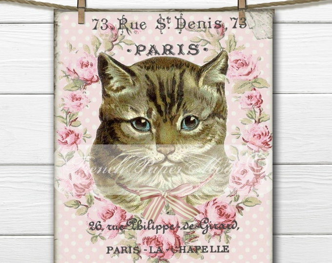 Digital French Cat, Shabby French Graphic Cat, French Pillow Cat Transfer Image Digital Download, Digital Print, Room Decor