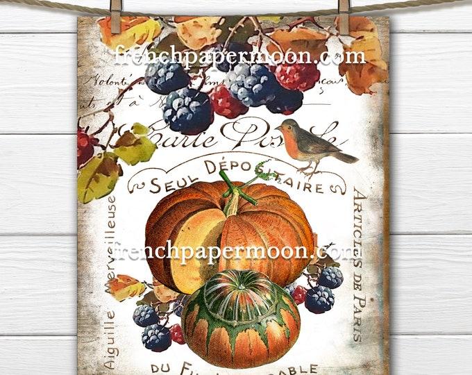 Vintage French Pumpkin Digital, Pumpkins, Woodland, Fall Berries, Autumn Colors, French Pillow Image, DIY Fall Decor,, Transparent, Bird