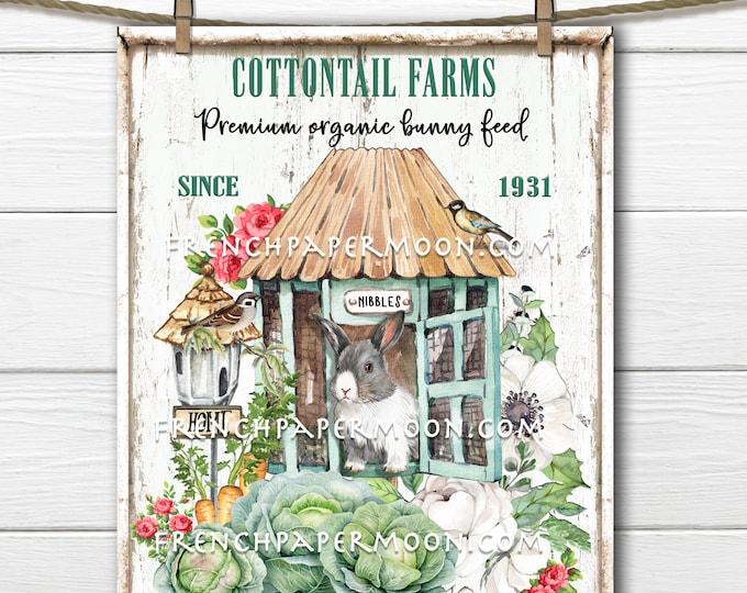 Bunny Garden, Digital, Rabbit Feed, Organic, Bunny Hutch, Spring Bunny, Cabbages, DIY Bunny Sign, Pillow Image, Wreath Decor, Easter Decor