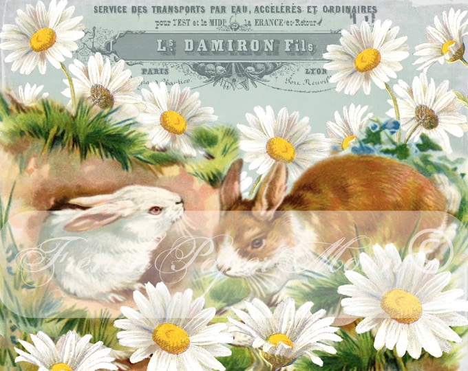 Shabby Vintage Bunnies, Vintage Rabbits, Flowers, Daisies, French Typography, Instant Download Graphic Transfer