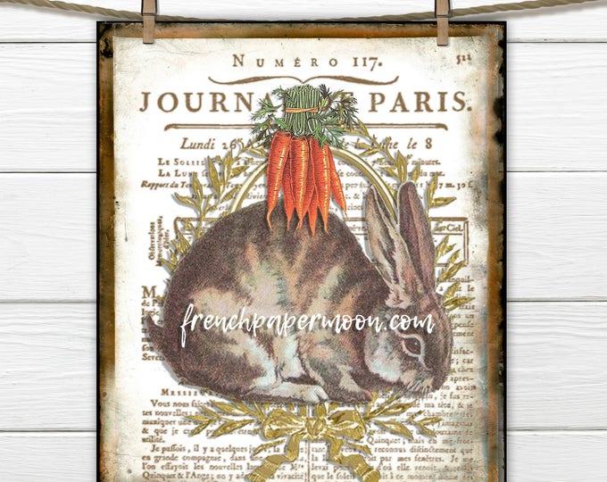 Vintage Bunny Rabbit Printable Digital, Farmhouse Bunny, French Script, Pillow Image, Fabric Transfer, Decoupage