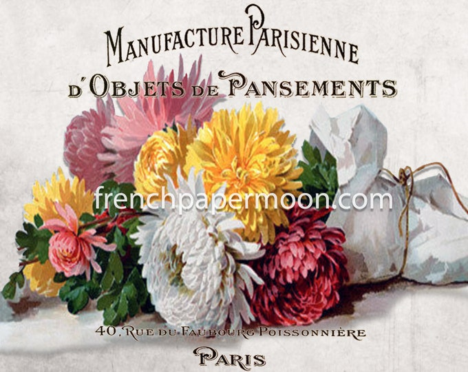 French Fall Flowers, Dahlias, Mums, Chrysanthemum, Autumn Floral Graphic, Victorian Bouquet, Typography, Fabric Transfer, Crafts, JPEG PNG