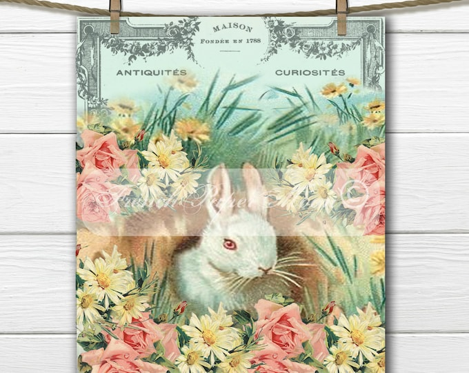 Digital Shabby Chic Bunny, Rabbit, Flowers, French Typography, Digital Easter Pillow Image, Instant Download Graphic Transfer