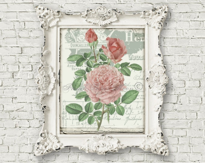 French Shabby Chic Digital Roses, Botanical Transfer Graphic, French Pillow Image, Iron on Fabric