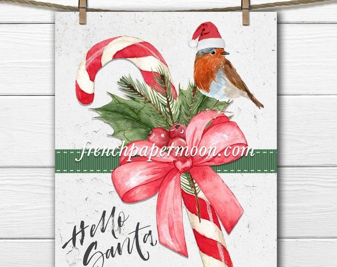 Cute Christmas Candy Cane Printable, Red Robin, Santa Hat, Wood, Transparent, Xmas Pillow Image, Winter Bird, Craft Supply, Xmas Sign, Decor