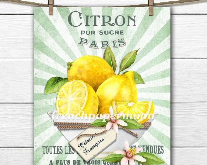 French Lemons Digital Print, Bowl Lemons, French Typography, Kitchen Print, Fabric Block, French Pillow Image