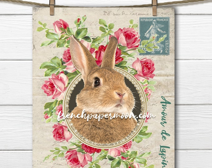 Digital French Bunny, Easter Bunny, Spring Rabbit printable, French Pillow Image, Sublimation, Transparent, Instant Download, Crafts