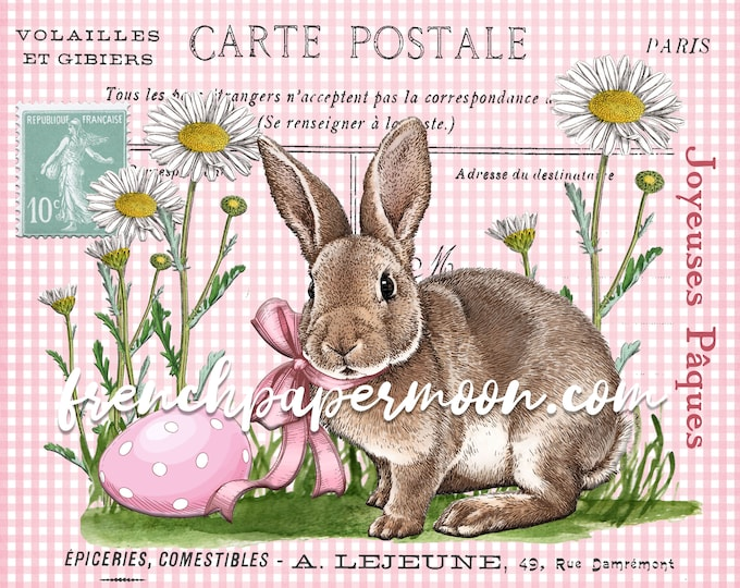 Pink Easter Bunny Print, Vintage Bunny Graphic, Easter Eggs, Spring Garden, French Easter Pillow Image, Digital, Transparent, Crafts