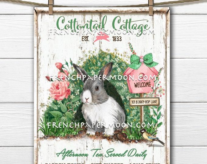 Easter Bunny, Digital, Spring Bunny, Garden Bunny, Cottontail, DIY Easter Sign, Pillow Image, Wreath Decor, Tiered Tray Decor, Farmhouse