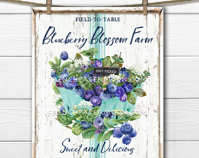 Farmhouse Bluebrries, Summer Fruit, Digital, DIY Blueberry Sign, Fabric Transfer, Pillow Image, Wreath Decor, Wood, PNG, Tiered Tray
