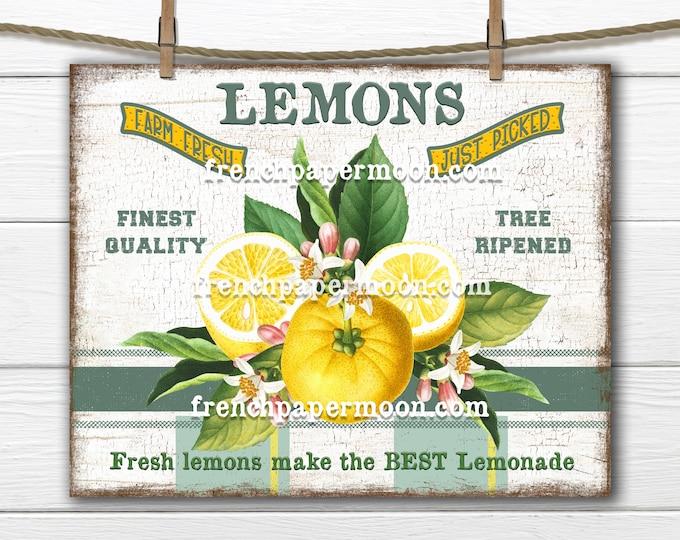 Lemons, Modern Farmhouse, Digital, Botanical, Farm FreshLemons, Lemonade, Plaid, PNG, Wood, Fabric Transfer, Tiered Tray Decor, Lemon Sign