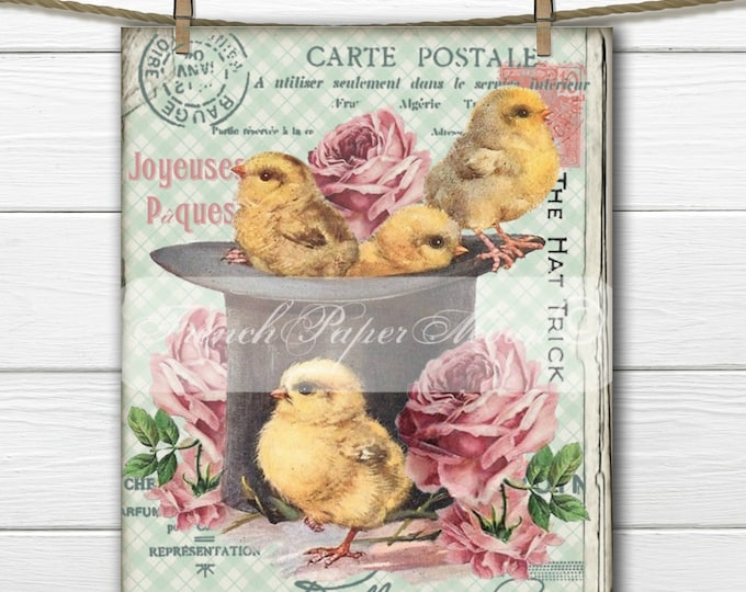 Shabby Chic Digital Easter Chicks, Roses, French Typography, Shabby French Digital Easter Transfer, Instant Download