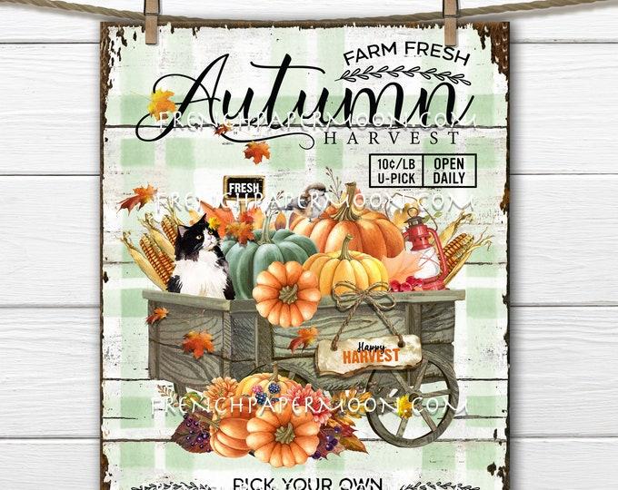 Autumn Harvest, Pumpkin Wagon, Fall Farmhouse, Fall Market, DIY Fall Sign, Wreath Accent, Fabric Transfer, Fall Digital Print, Home Decor