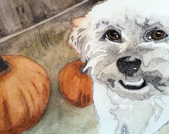 Henry with Pumpkins - notecard