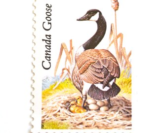 Qty: 10 UNused Canada Goose Postage Stamps // Vintage 22 Cent Canadian Geese Stamp Set of Ten