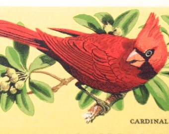 10 Unused Cardinal Stamps // Vintage 8 Cent Wildlife Conservation Red Bird Postage Stamps for Mailing