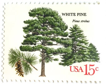 10 Unused Pine Tree Stamps // Vintage White Pine Forest Postage Stamps For Mailing