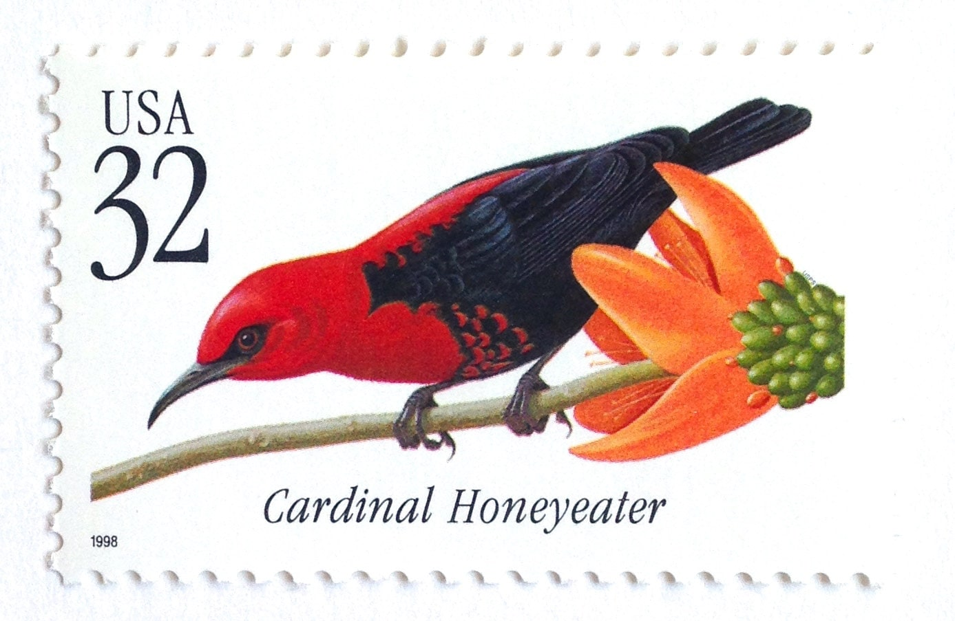 10 Unused Red Tropical Bird Vintage Postage Stamps // Cardinal | Etsy