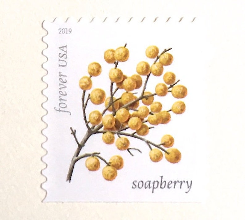 10 Gold Berry Forever Stamps // Soapberry Winter Berries // image 0