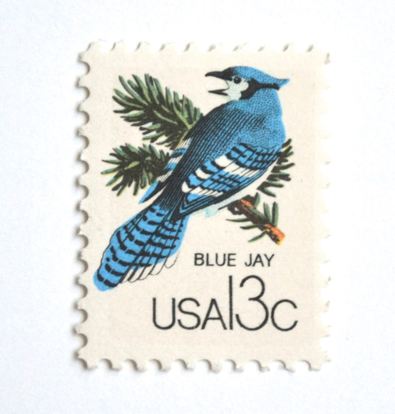 10 Vintage Blue Jay Stamps Unused Pine Tree Green and Blue image 0