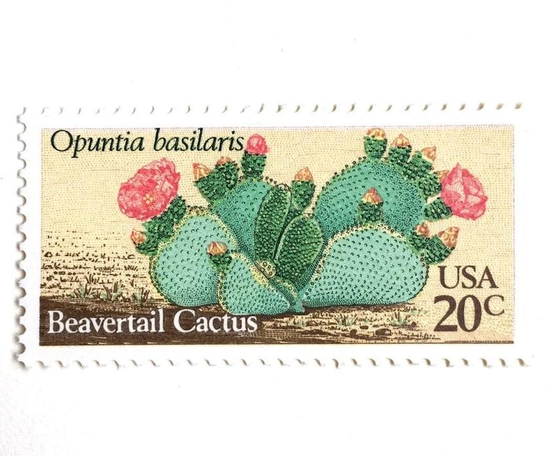 10 Cactus Postage Stamps // Unused Vintage Southwestern Desert image 0