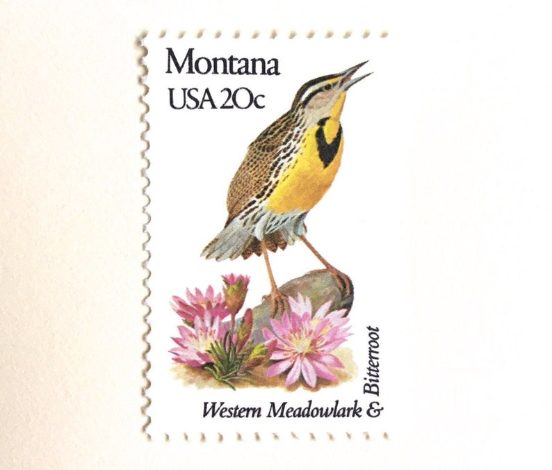 10 Vintage Montana Postage Stamps // Western Meadowlark and image 0