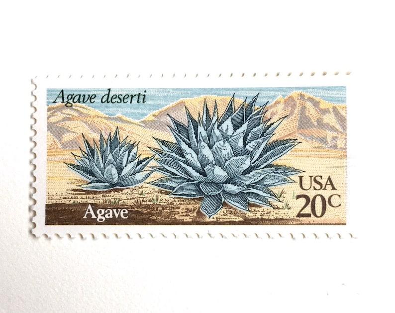 10 Agave Postage Stamps // Unused Vintage Southwestern Desert image 0