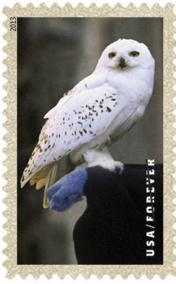 1 Hedwig Forever Stamp Harry Potter Owl Hedwig Snowy Owl Etsy
