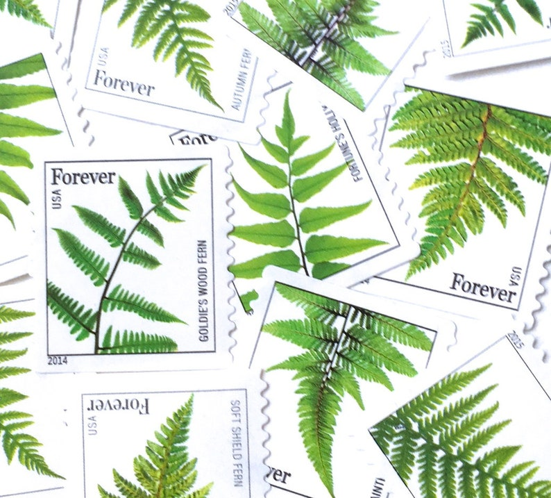 10 Green Botanical Forever Stamps // Botanical Forest Fern image 0