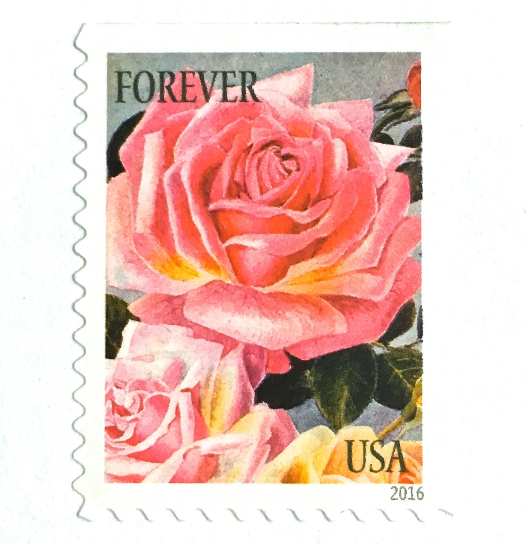 10 Unused Pink Rose Forever Postage Stamps Vintage Botanical Print Stamps For Mailing Wedding Invitations Save The Dates Cards