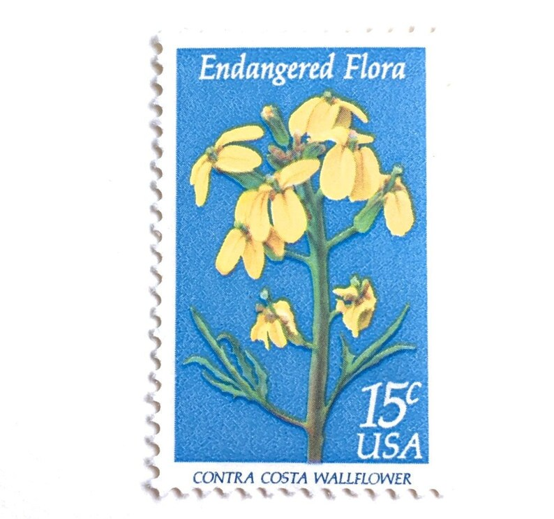 10 Vintage Blue Botanical Stamps // Unused Blue and Yellow image 0