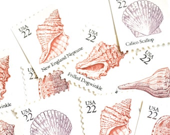 Vintage Seashell Stamps // 22 Cent Nautical Sea Shell Postage Stamps // Ocean Beach Postage Stamps
