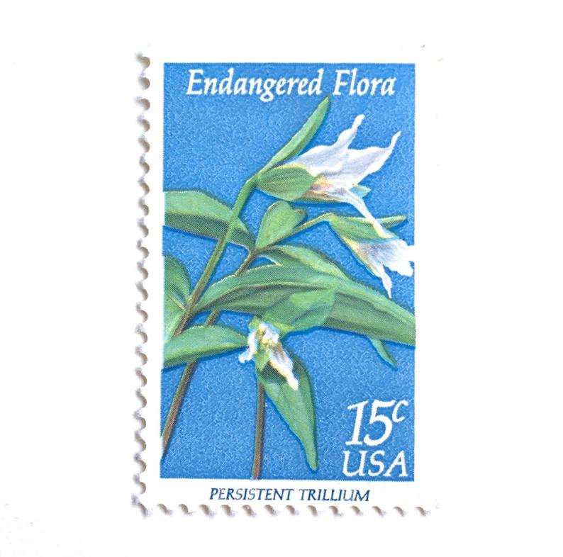 10 Vintage Blue and White Botanical Stamps // Unused White image 0