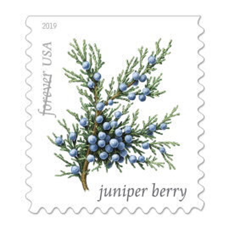 10 Forever Evergreen Postage Stamps is for Mailing Invitations image 0