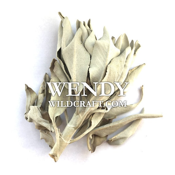 White Sage Incense Wildcrafted