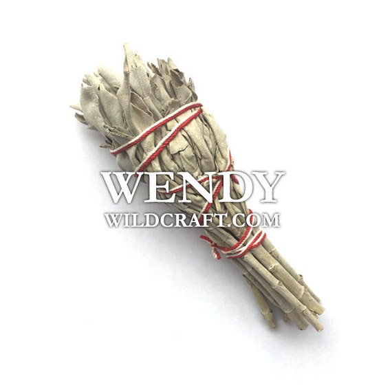 Sage Smudge Stick Mini