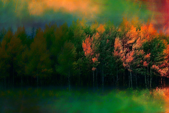 Aspen Glory, Fine Photo Artistry by John Strong Arts/JStrong Photos.  Image captured near Grand Lake, Colorado.  Perfect for home and Office