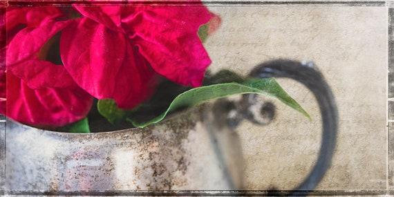 Sweet Poinsettia, Antique Sugar Bowl, John Strong Arts/JStrong Photos