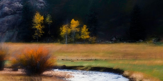 Trios, Fine Photo Artistry, Fine Art Photography, John Strong Arts, JStrong Photos.  Bear Creek, near Evergreen, Colorado