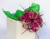 Aboyne - Tocado en Vino, Marrón y Cream, realizado con Plumas y detalle de Flores Marrón