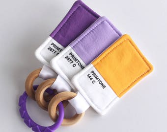 Color Swatch Baby Teether & Crinkle Toy