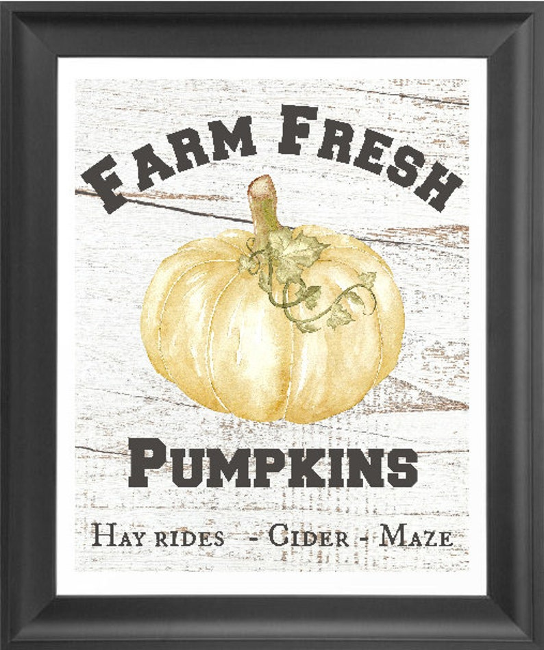 farm fresh pumpkins fall decor Instant Download watercolor image 0