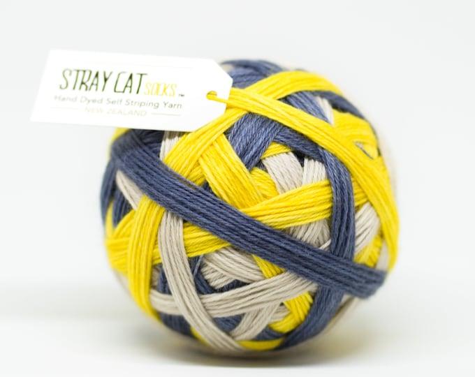 MEADOWLARK - vibrant hand dyed self striping sock yarn