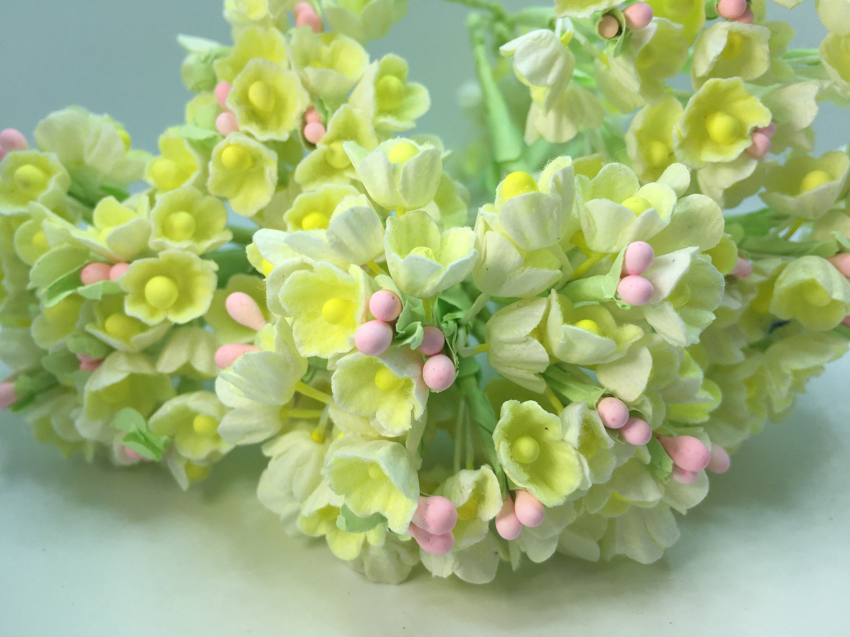 Forget Me Nots Flower Bundle Whiteyellow 8 Stem New Etsy