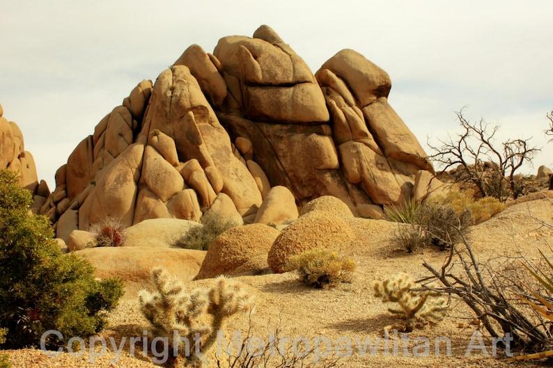 8x10 photograph rock formation at Joshua Tree National Park image 0