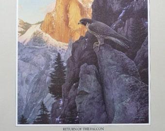 Return of The Falcon, Stephen Lyman Yosemite Poster
