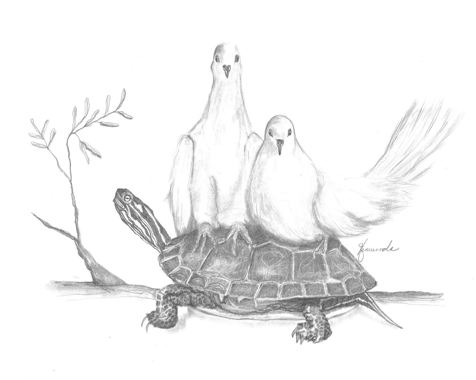 Pencil drawing print two turtle doves day 344